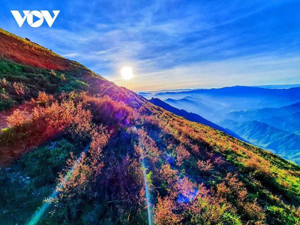 Trekking up Ta Chi Nhu Mountain in Yen Bai