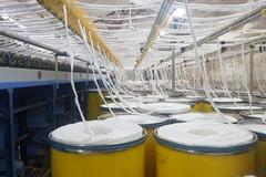 Lợi nhuận ngành sản xuất bông, xơ, sợi cao nhất