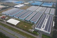 KTG Energy phân phối pin năng lượng mặt trời Longi