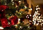 Lời chúc Giáng sinh ngọt ngào dành cho người yêu