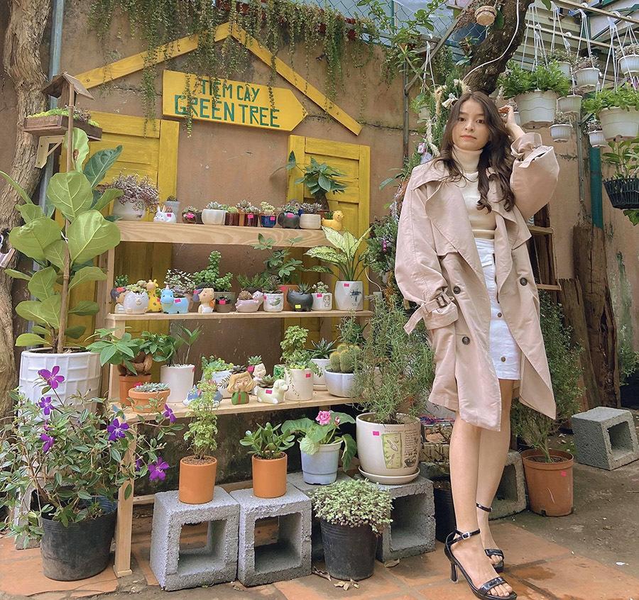Cô gái Đắk Lắk bỏ việc lương cao, về trồng nghìn cây sen đá