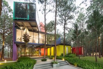 Bảo tàng nghệ thuật đương đại giấu mình dưới rừng thông