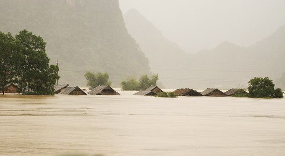 Natural disasters cause Vietnam's economic loss of nearly US$1.7 billion in 2020