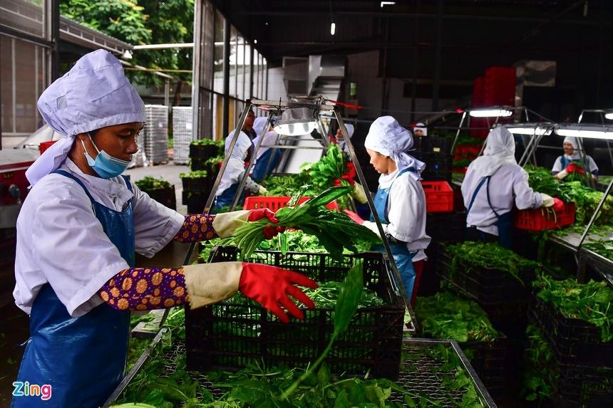 Những chính sách ảnh hưởng đến 20 triệu người lao động sắp có hiệu lực