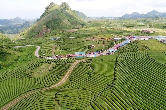 Sơn La: Giải quyết khó khăn, tăng cường phát triển nông nghiệp ứng dụng CNC