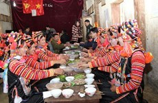 Ha Nhi ethnics in Dien Bien celebrate traditional new year