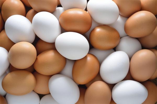 So sánh trứng gà màu trắng và nâu
