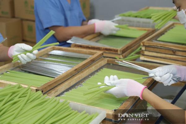 Hà Nội: Ông nông dân 'phù phép' rau, củ quả thành ống hút có thể ăn được, dân Hàn Quốc, Đức mê tít