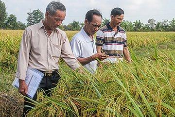 Hậu Giang sẽ triển khai các ứng dụng thông minh chuyển đổi số trong nông nghiệp, du lịch...