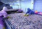Covid-19 costs Vietnam US$19 billion in export revenue