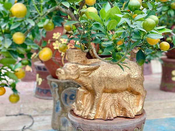 Golden buffalo carrying kumquat tree, a decorative product for 2021
