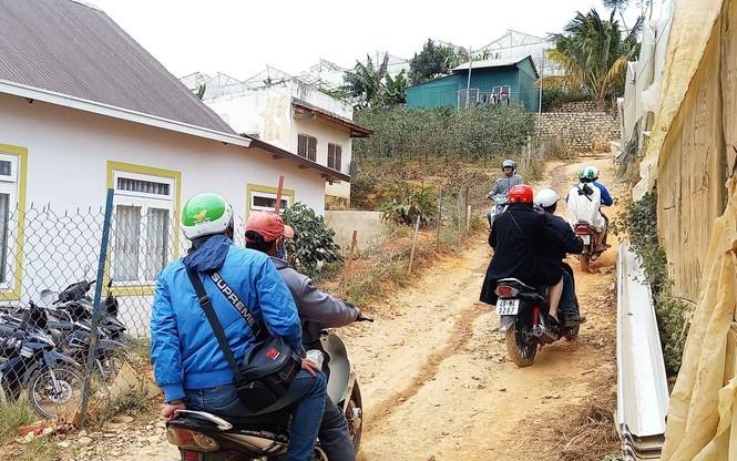 Du khách bị 'chặt chém' trên đường vào ngắm rừng mai anh đào ở Đà Lạt