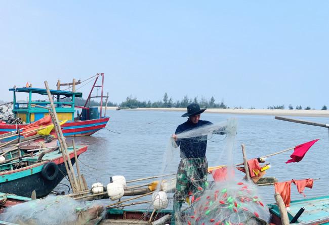 Loài cá làm thức ăn cho heo thành đặc sản ngày lạnh, ngư dân trúng đậm đầu năm
