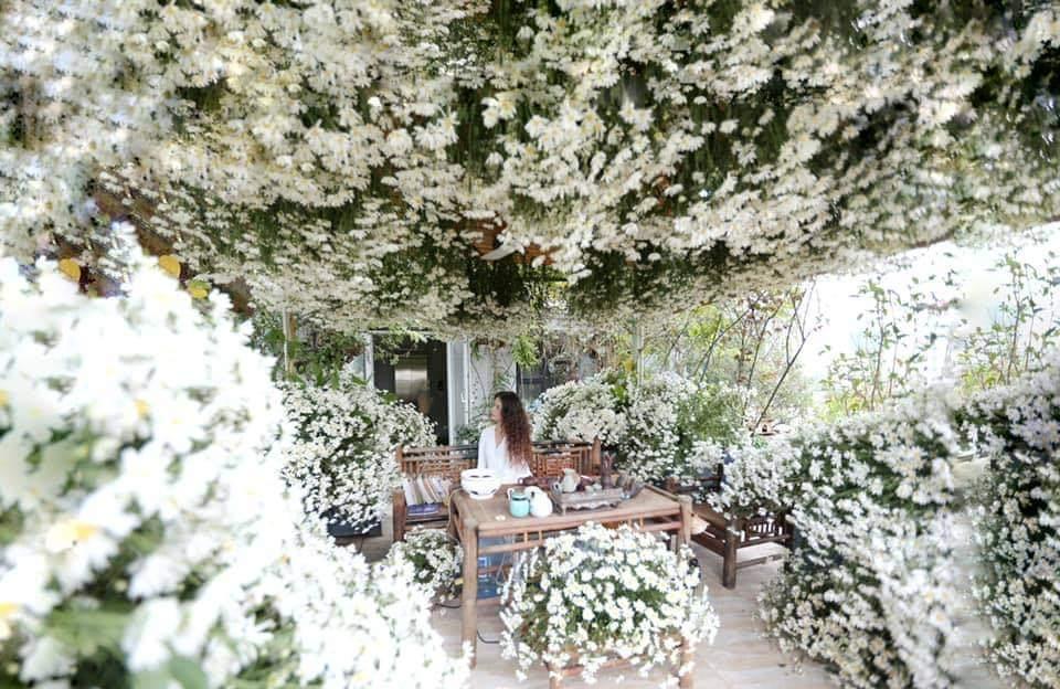 'Vườn hoa khổng lồ' trên sân thượng của người phụ nữ Hà Nội
