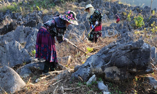Tham Khen cave, natural masterpiece in Dien Bien