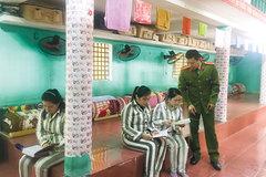 Impressive model of friendly bookcase at Ngoc Ly detention center