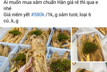'Ngã ngửa' với sâm tươi Hàn Quốc giá 500.000 đồng/kg