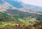 Research reveals trends in Vietnamese travelers' behavior
