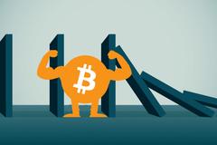 900 triệu/bitcoin: Đỉnh cao khó tin và nguy cơ đổ sụp