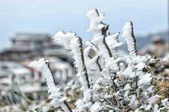 Lai Châu từ 1 - 5 độ C, hơn 130 trường nghỉ học vào ngày mai