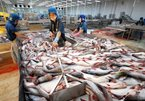 For the sake of sustainable fish export