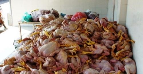 Đáng sợ gà Trung Quốc 20 nghìn/con, sâm Hàn Quốc 500 nghìn/kg