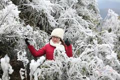 Miền Bắc lại sắp rét tê tái, khả năng có tuyết rơi