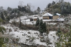 Rét nhất âm 3,4 độ C, tuyết phủ dày đến 20 cm, Lào Cai thiệt hại nặng