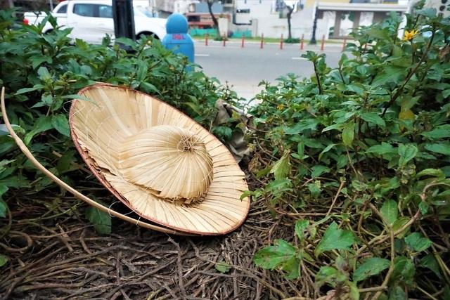 Xót xa 'con đường mùa đông' ở Đà Nẵng bị giẫm đạp tan hoang