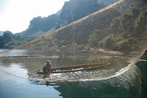 Ba giờ vật lộn bắt thủy quái Sông Đà nặng hơn 50 kg