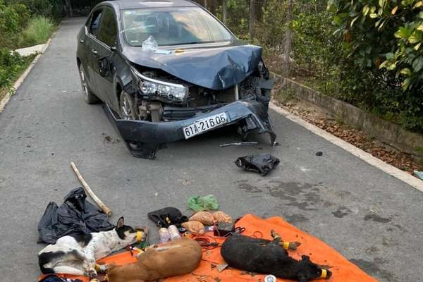 'Cẩu tặc' lái ô tô tông móp đầu xe tuần tra công an ở Bình Dương