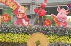 Ho Chi Minh City decorated to prepare for Tet
