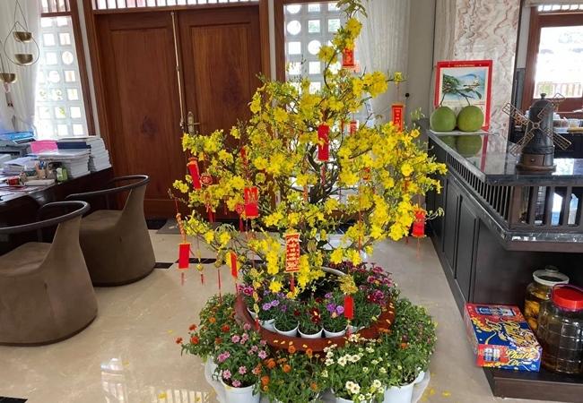 biet thu day hoa cua dien vien quy binh va ba xa doanh nhan 10 Sao Việt hôm nay 25/2: Phút bình yên của Chí Trung và bạn gái ở quê