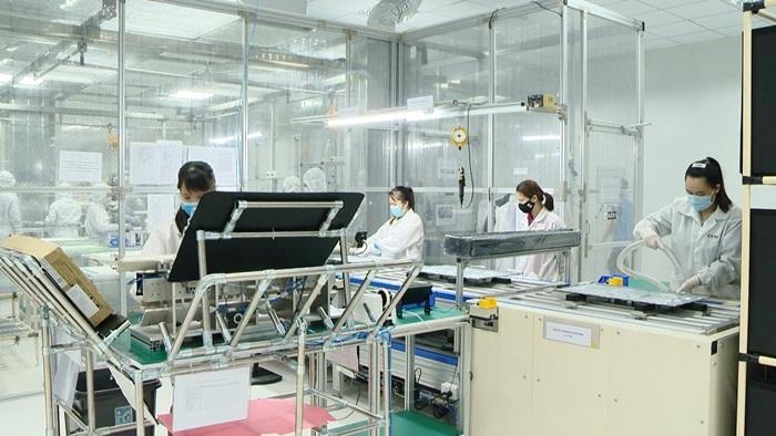 Nhờ được hỗ trợ, doanh nghiệp ở Quảng Ninh sớm quay lại thị trường kinh doanh