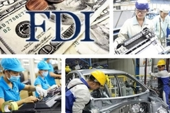 Tax evasion questions raised as 55% of FDI enterprises report losses