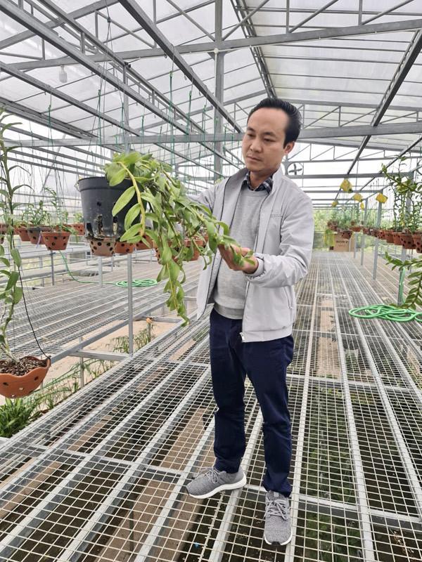 Chủ vườn lan 2000m2 chia sẻ kỹ thuật trồng và chăm sóc hoa lan