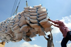 Q1 rice export outlook remains promising