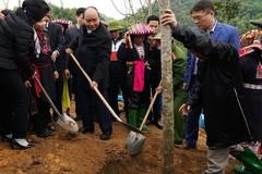 Thủ tướng: Mỗi người trồng một cây xanh, mỗi nhà góp một mảng xanh