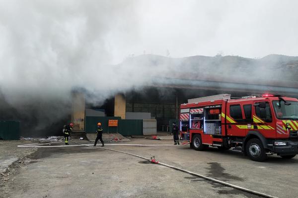 Kho hàng hoá 10 tấn ở cửa khẩu Bắc Phong Sinh cháy nghi ngút