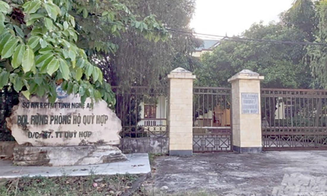 Bán rừng phòng hộ, trưởng và phó ban quản lý ở Nghệ An bị bắt giam