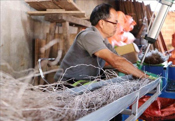 Canna vermicelli producers busy as Tet nears