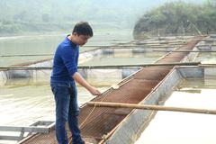 Anh nông dân nuôi cá đặc sản thu tiền tỷ