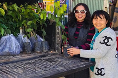 Người phụ nữ Đà Lạt tặng 4.000 cây xanh để 'đi đâu cũng có vườn'