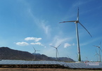 Wind, solar power sees new boom