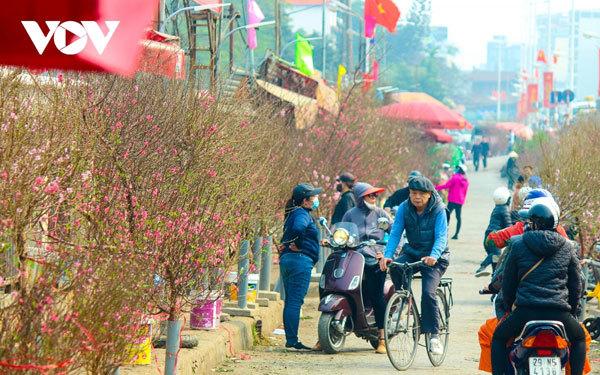 Bustling flower market ahead of lunar New Year holiday