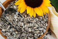 Tác dụng của loại hạt được người Việt ăn nhiều vào dịp Tết