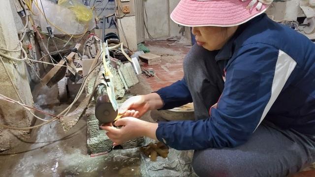 Hà Nội: Thu tiền triệu từ chế tác sừng trâu ngày giáp Tết Tân Sửu