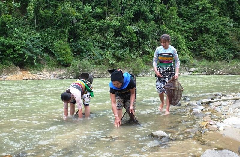 Lỡ trộm cá sông, người đàn ông phải xin cả làng tha tội