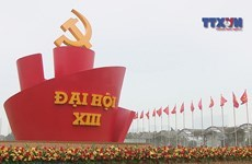 Diplomats, scholars look forward to Party Congress