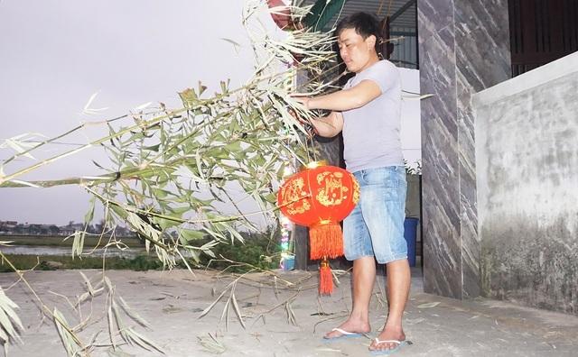 Loại cây 'cắt gốc, còn ngọn' mỗi năm chỉ bán 1 lần rất hút khách mua